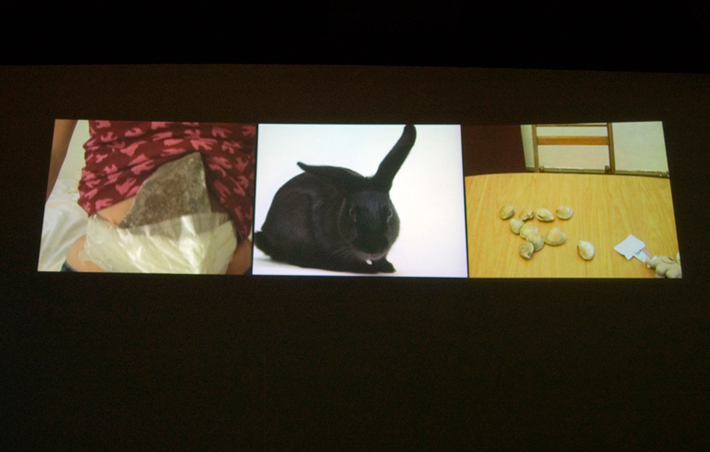 Rock, Rabbit, Baby!, Video Installation