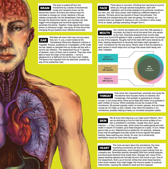 Cropped screenshot  of the online layout of The WIRED Atlas of the Human Ecosystem